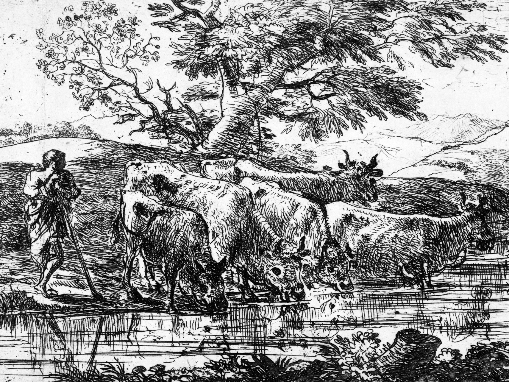 Engraving of picturesque scene with cowherd & his cattle.